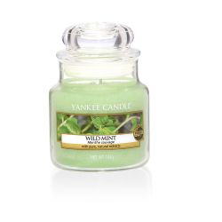 Scented candle Yankee Candle color green   Wild Mint Small Jar online price for sale:  11.90 €