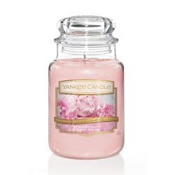 Scented candle Yankee Candle color pink   Blush Bouquet Large Jar online price for sale:  29.90 €