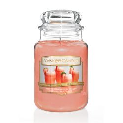 Scented candle Yankee Candle color orange   White Strawberry Bellini Large Jar online price for sale:  29.90 €