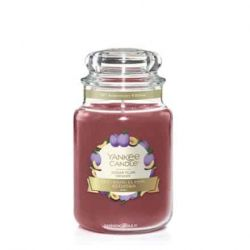 Scented candle Yankee Candle color red   Sugar Plum Large Jar online price for sale:  20.93 €