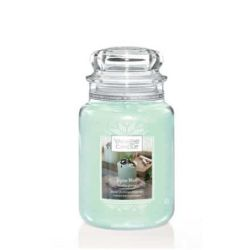 Scented candle Yankee Candle color green   Alpine Mint Large Jar online price for sale:  29.90 €