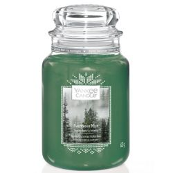 Scented candle Yankee Candle color green   Evergreen Mist Jar online price for sale:  29.90 €