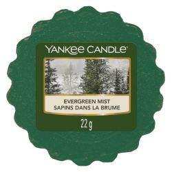 Scented candle Yankee Candle color green   Evergreen Mist Wax Melt online price for sale:  1.10 €